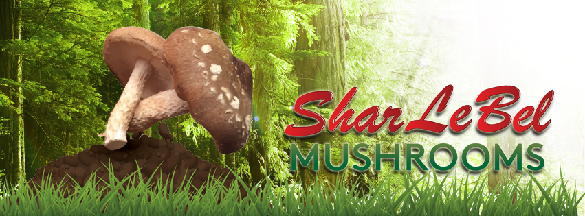 SharLeBel Mushrooms