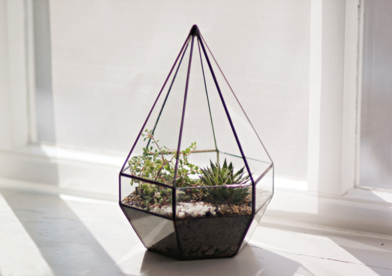 The perfect centrepiece and conversation starter. TheTable Shardincludes a planting kit and instructions. Plants are unfortunatelynot included due to shipping restrictions - contact us if you would like us to plant it for you, we'd be more than happy to!