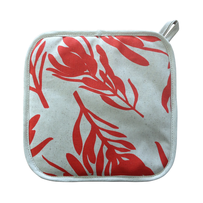 Pot Holder - Conebush (Watermelon on Natural)
