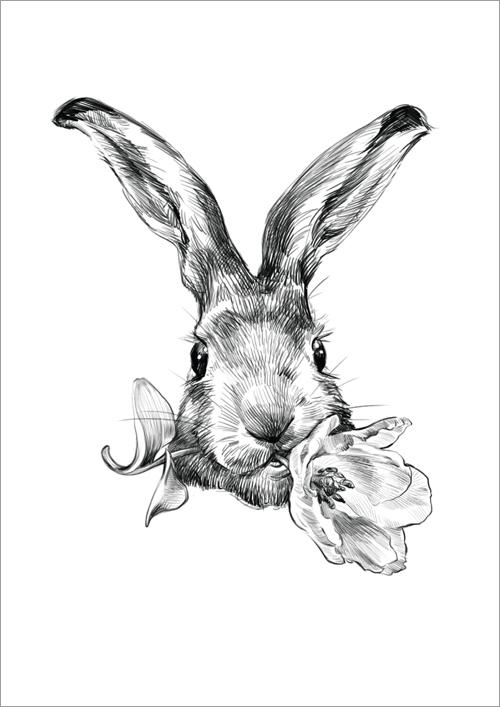 Children's print ~ Bunny Nibbles