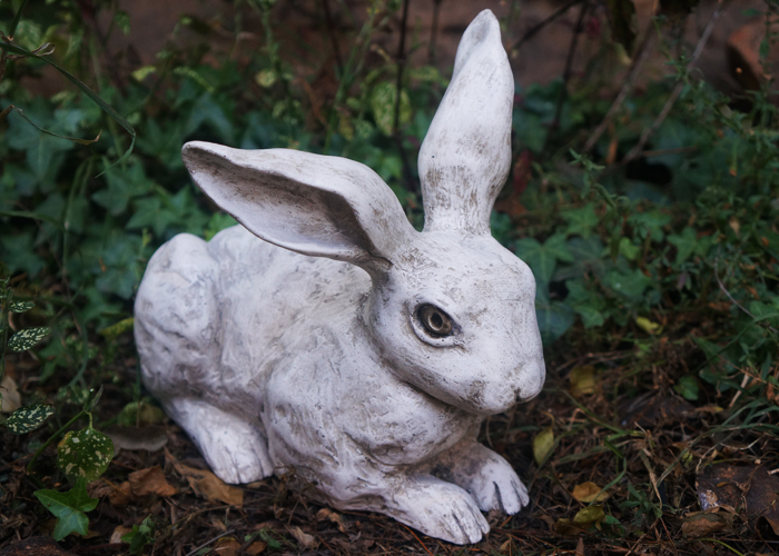 Hare Apparent - referring to heir apparent and the heir to the throne