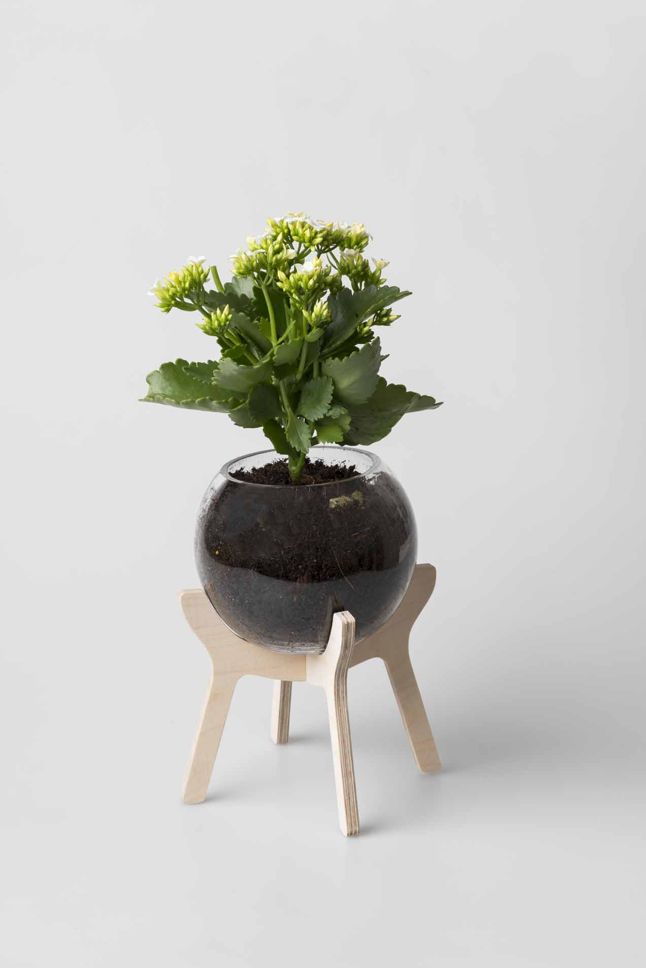 Poitjie cook outs are a part of South Africa's proud heritage. This Pot plant holder, with glass bowl included, will add a pristine, yet authentic South African feel to any home. Wooden element comes flat packed. Glass Bowl included.  Material:Northeast European Birch Plywood