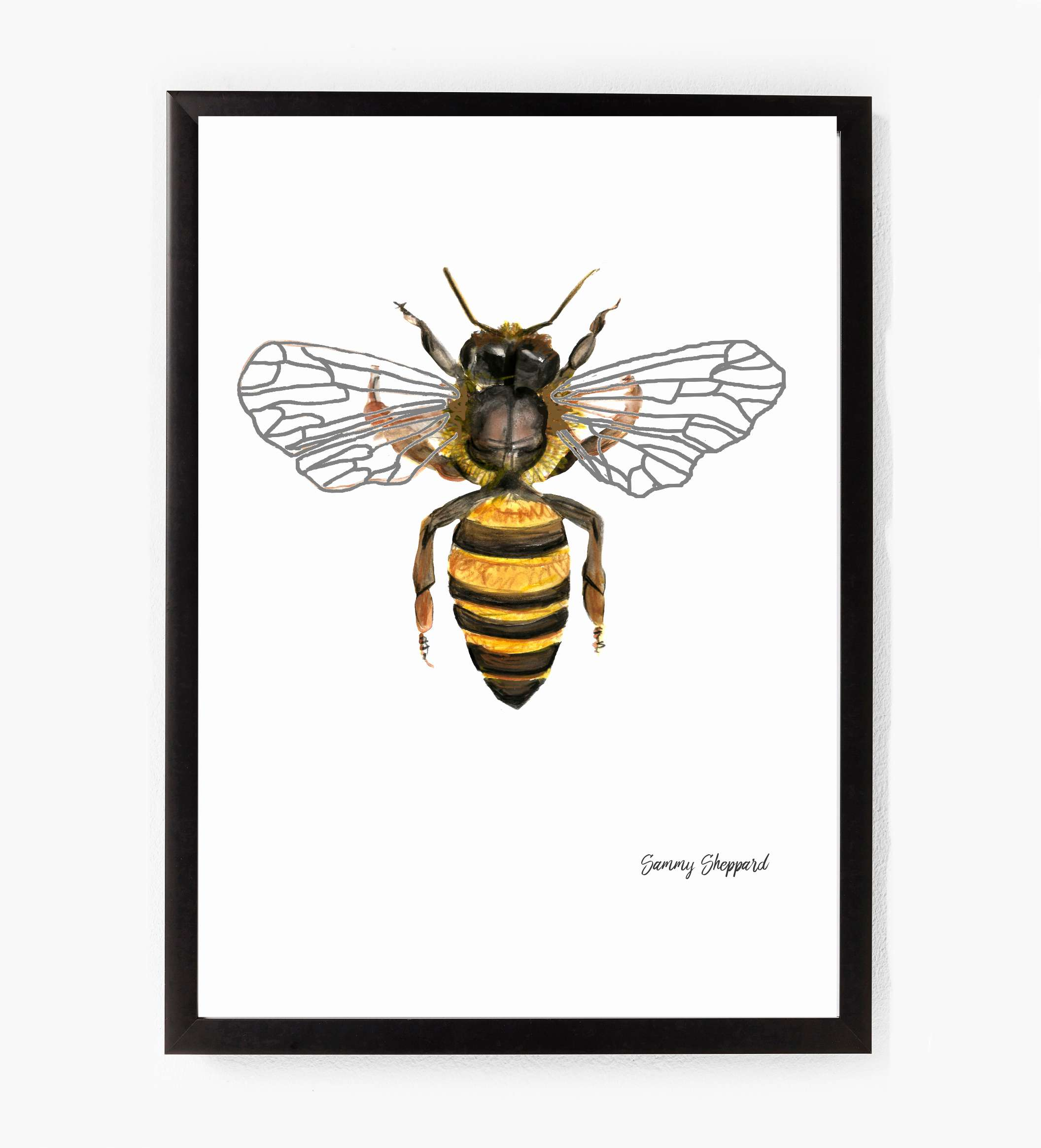 This beautiful hand illustrated Bee print by Sammy Sheppard is simple and will add some magic to your wall.