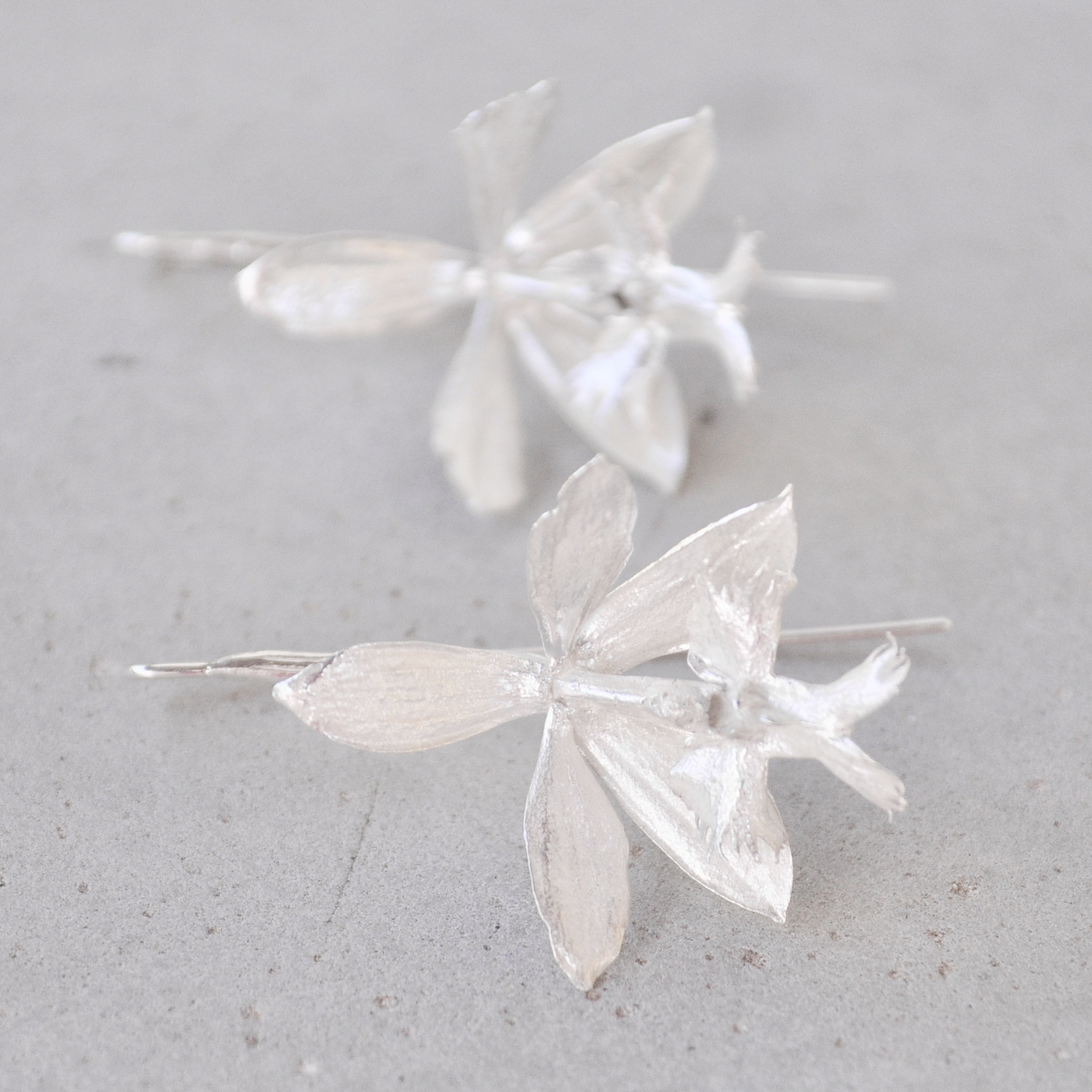 This striking pair of earrings was made from sterling silver castings of Epidendrum orchid flowers. Every set is unique as you can only get a single casting from a flower seeing that the mold is destroyed during the casting process. Our orchid earrings are seasonal since the orchid plant only flowers during specific times of the year.