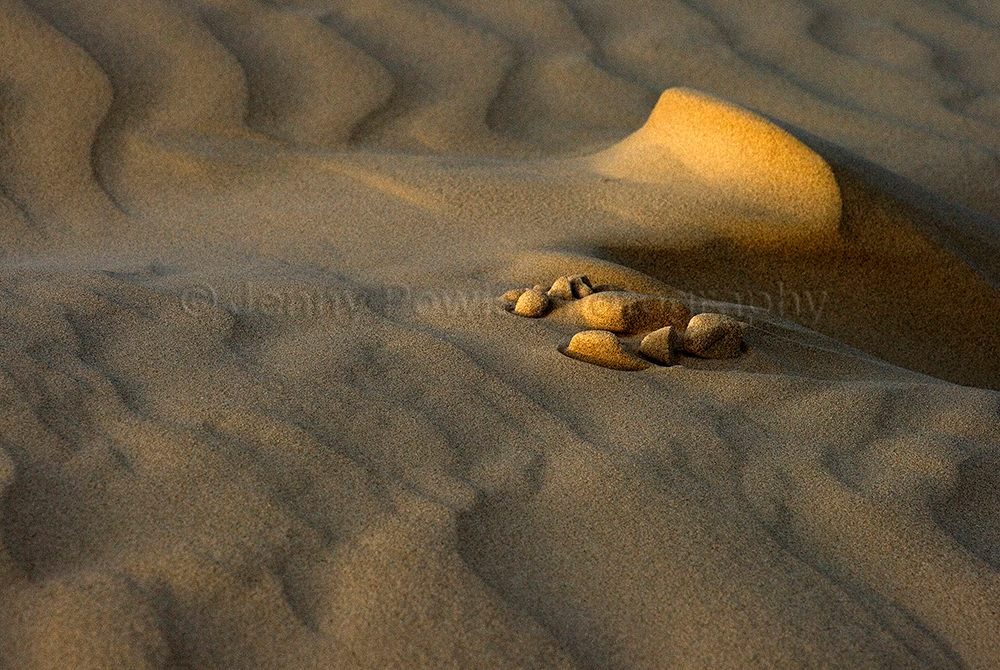 Sand Patterns De Hoop