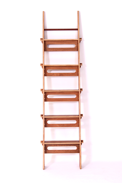Step Up Ladder