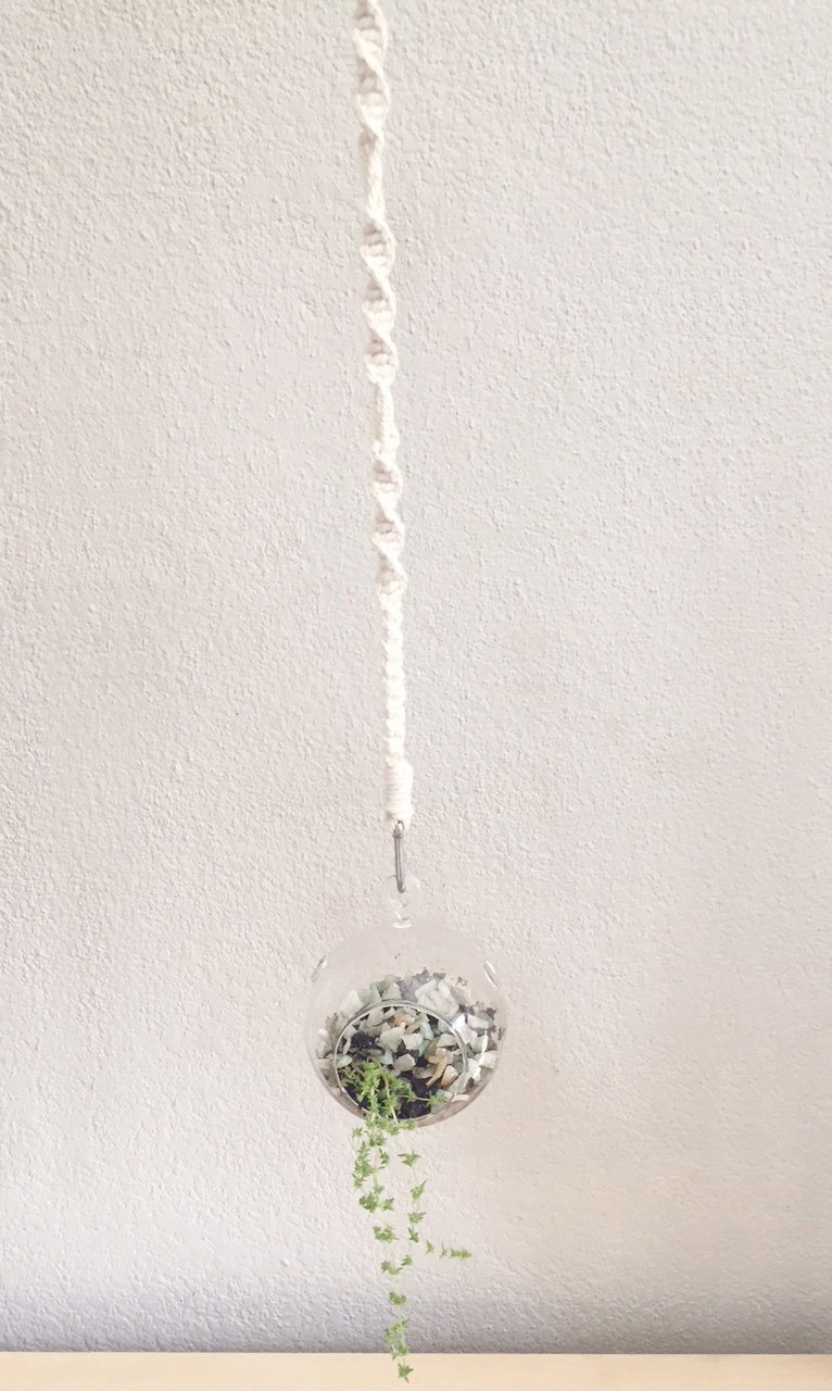 String for Hanging Terrarium