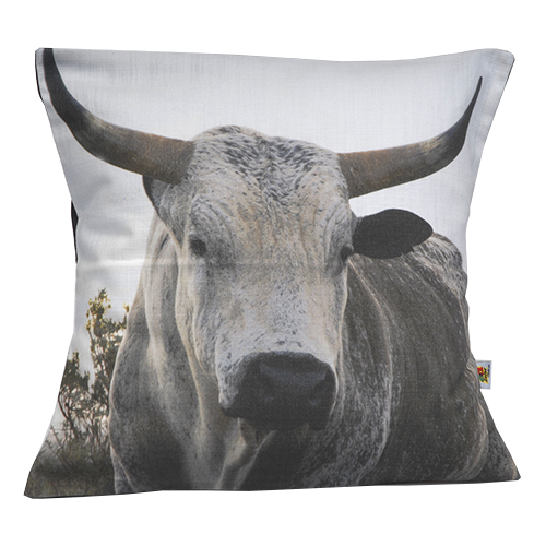 Nguni Bull cushion