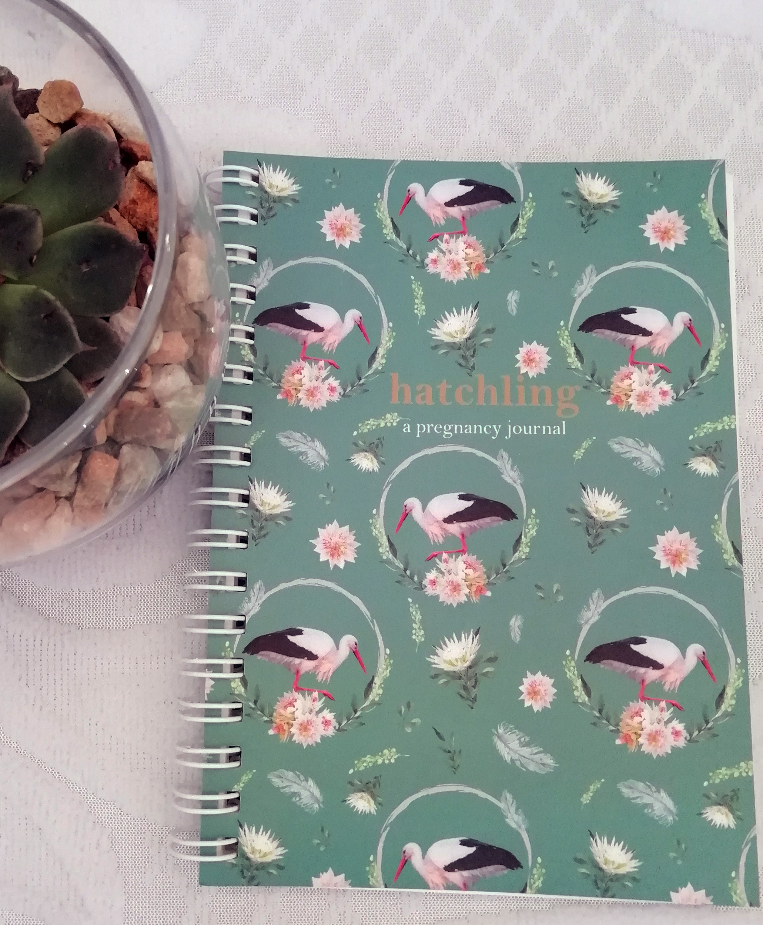 A6 Hatchling Pregnancy Journal