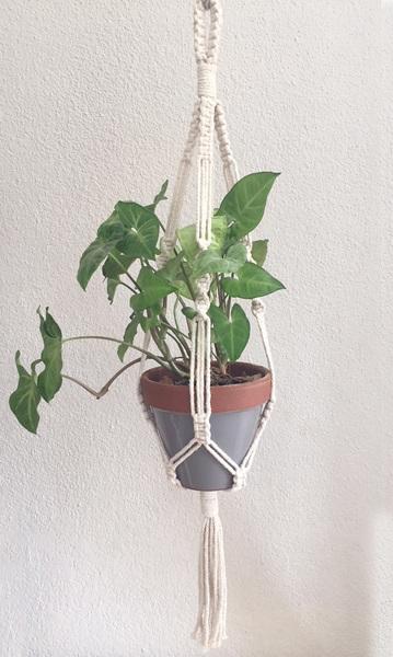 Original-Style Plant Hanger