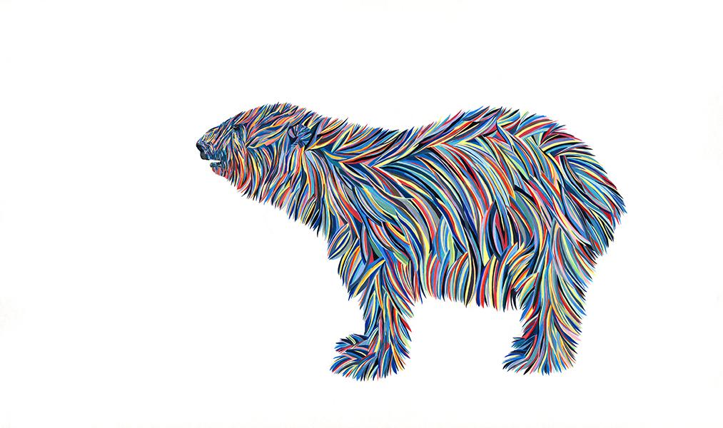 Polarlevel